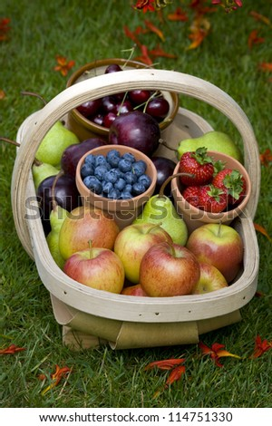 trug of harvested summer fruit including: blueberries, cherries, apples, pears, strawberries, plums - stock photo