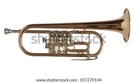 trumpet - stock photo