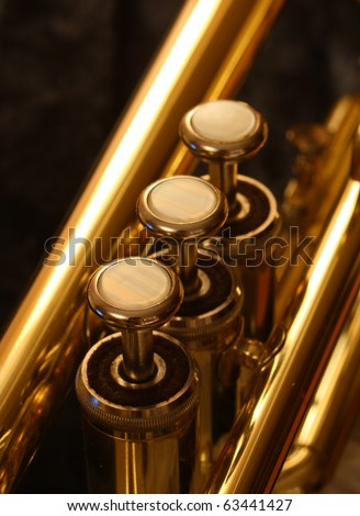 Trumpet valves close up
