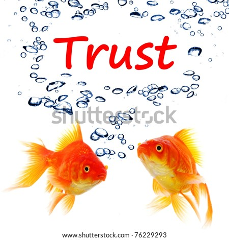 trust word and goldfish showing assurance confidence or protection concept - stock photo