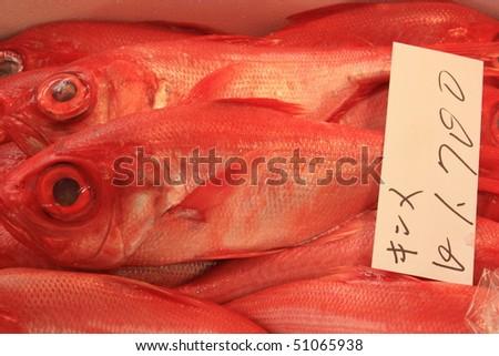 Tsukiji - Fish Market - stock photo