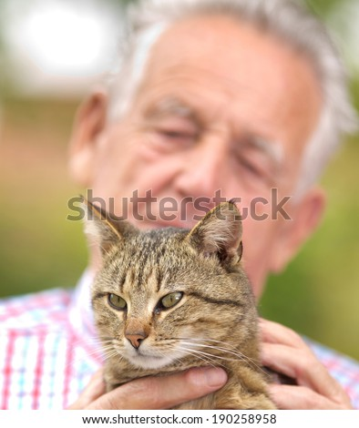 Tubby cat in old man hands, enjoying cuddling - stock photo
