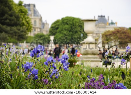 """Tuileries Garden (Paris, France) in spring.   Illustration for idea """"I love Paris in the spring time"""". Blurred people, Louvre museum and Arc de Triomphe du Carrousel seen through violet iris flowers. - stock photo"""