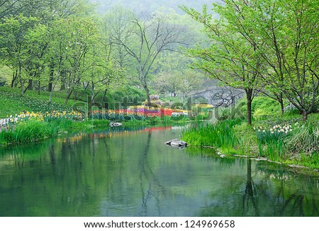 tulip and tree beside lake - stock photo
