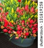 tulip in a tin basket in flower shop - stock photo