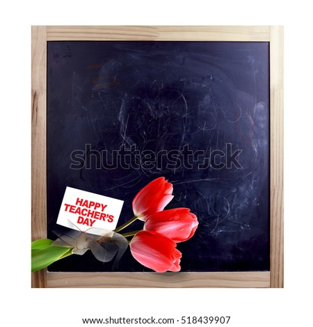Tulip on blackboard and teacher's day card