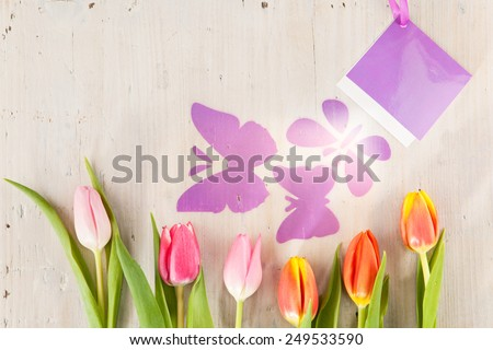 Tulips and butterflies as harbingers of spring - stock photo