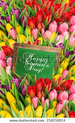 Tulips and chalkboard. Fresh spring flowers with water drops. Holidays background with sample text  Happy Women's Day! - stock photo