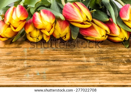 Tulips arrangement on a wood background for flowers backgrounds,  mothers day, wedding invitation, greetings card and invitation cards - stock photo