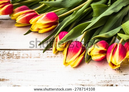 Tulips arrangement on a wooden planks background for easter backgrounds, mothers day, wedding invitation, greetings card and invitations card - stock photo