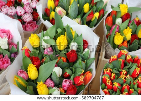 tulips at the flowers wholesale market
