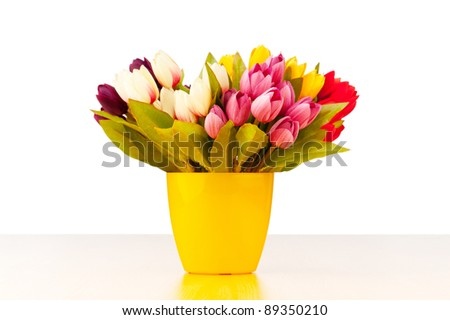 Tulips flowers isolated on the white - stock photo