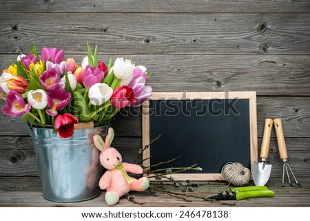 Tulips in a metal bucket with gardening tools against wooden background - stock photo