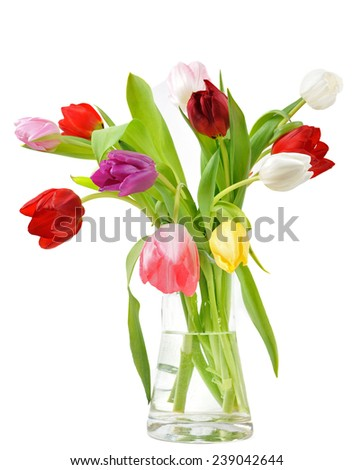 Tulips in the vase - stock photo