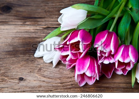 tulips on a wooden background - stock photo