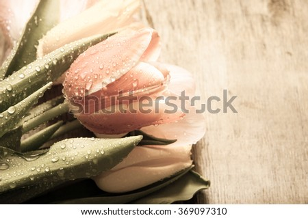 Tulips on a wooden background/toned photo