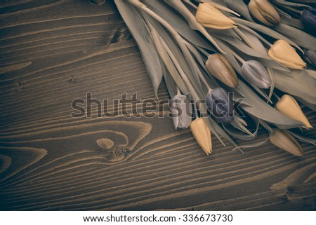 tulips over brown wooden table - stock photo