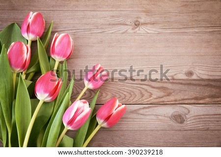 Tulips.Red tulips on wooden background. Tulip. Red tulips, bouquet of tulips, tulips macro, tulips in bouquet, beautiful tulips, colorful tulips, green tulips petals, tulips on wood. - stock photo