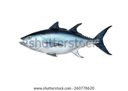 Tuna Fish - stock photo