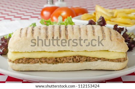 Tuna Melt - Cheese and tuna toasted panini served with salad and chips on a red and white gingham background.
