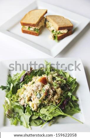 tuna salad and sandwich - stock photo