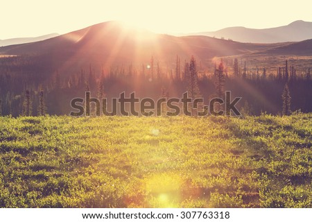 Tundra landscapes above Arctic circle - stock photo