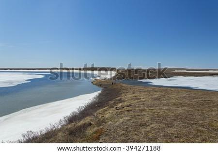 Tundra spring. Yamal, Russia. - stock photo