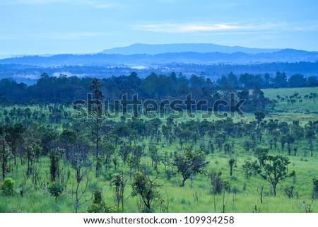 Tung Salang Luang National Park, Thailand - stock photo