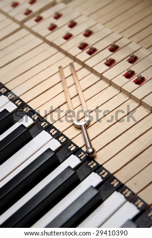Tuning fork - stock photo