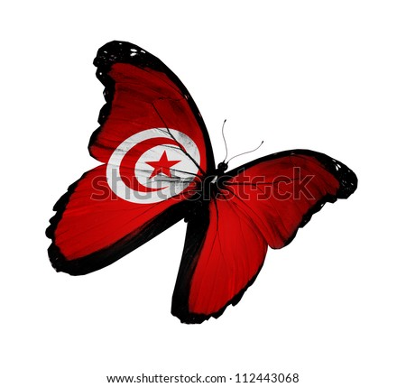 Tunisian flag butterfly flying, isolated on white background - stock photo