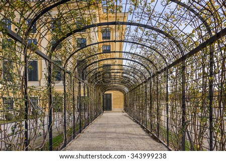 Tunnel garden at Schonbrunn Palace - stock photo