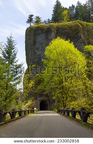 Tunnel on Historic Columbia River Highway - stock photo