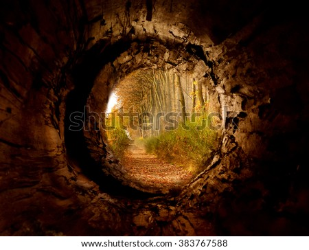 Tunnel to magic forest - place of harmony, freedom, happiness - stock photo