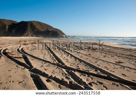 tunquen beach, south america, chile. photo by michelepautasso - stock photo