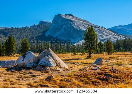 Tuolumne meadows in summer, Yosemite National Park - stock photo
