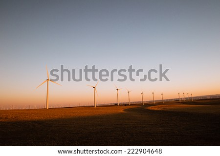 Turbines producing wind power in a beautiful golden sunset