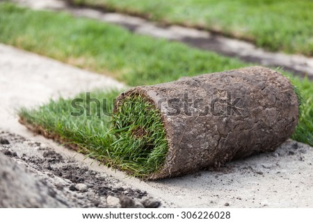 Turf roll, grass in the roll - stock photo