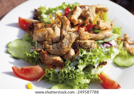 Turkey breast strips with mixed salad, close up