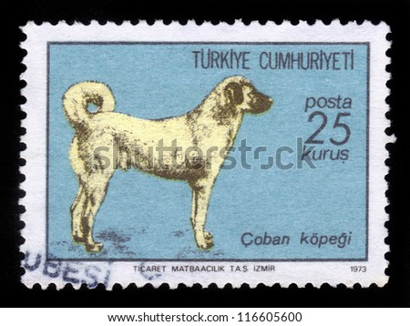 TURKEY - CIRCA 1973: A stamp printed in Turkey shows sheepdog, Turkish Sivas Kangal Dog , circa 1973 - stock photo