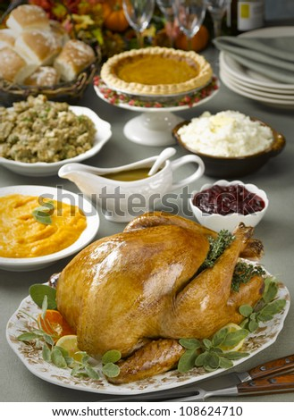 Turkey dinner - stock photo