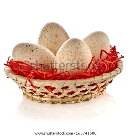 Turkey Eggs in basket  isolated on white background with clipping path  - stock photo