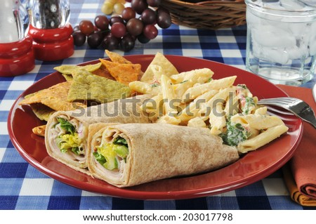 Turkey or chicken wrap sandwiches with mozzarella pasta salad and vegetable tortilla chips - stock photo
