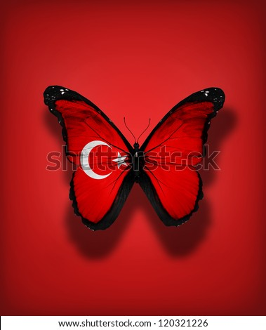 Turkish flag butterfly, isolated on flag background