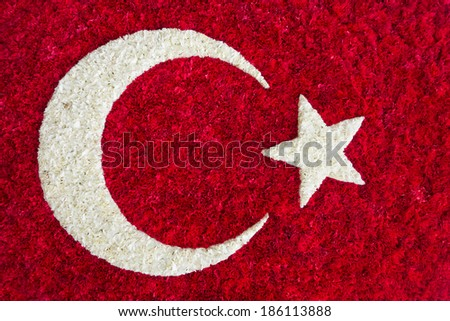 Turkish National Flag as an arrangement of white and red carnation flowers - stock photo