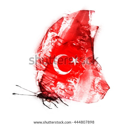 Turkish watercolor flag butterfly, isolated on white