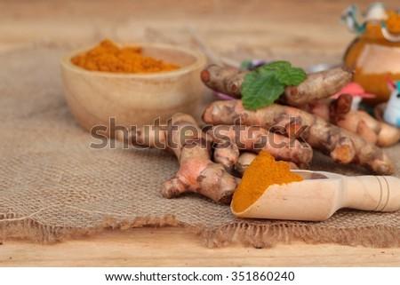 Turmeric herb yellow powder and fresh turmeric - stock photo