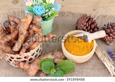 Turmeric powder and fresh turmeric for health - stock photo