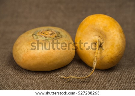Turnips on a brown background