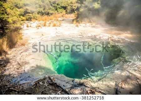 Turquoise colored steaming hot mineral pool in native bush at Tokaanu thermal park near Taupo Lake in North Island New Zealand