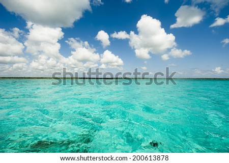 Turquoise sea and blue sky in the mexican Caribbean  - stock photo